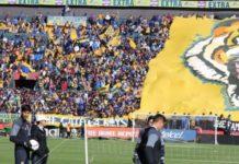 37 mil aficionados en el entrenamiento de Tigres